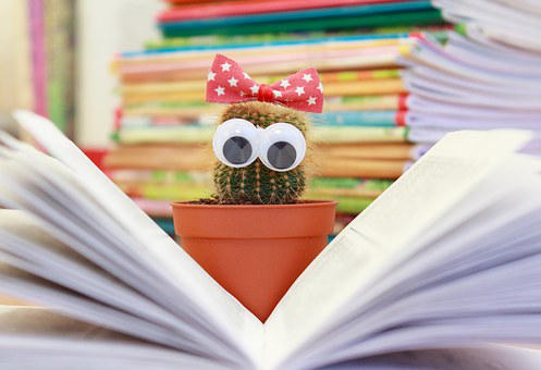 Nové dětské knížky! Co můžete v létě číst malým i větším knihomolům?