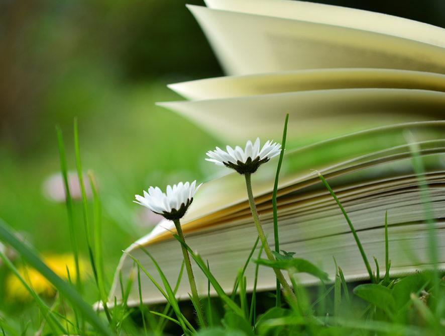5 knižních tipů: květnová nadílka pro malé i velké!