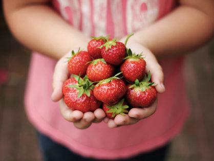 4 nejlepší recepty s jahodami: na smoothie, koláč, nanuky i knedlíky!